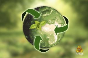 Contribuimos a mejorar el medio ambiente por medio de una serie de acciones positivas dentro de nuestras oficinas